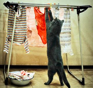 ヒートテックの正しい洗濯方法!効果を保つには手洗いが一番?