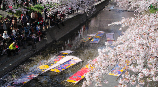 五条川桜祭り2019!見頃・おすすめ駐車場・屋台・アクセスについて