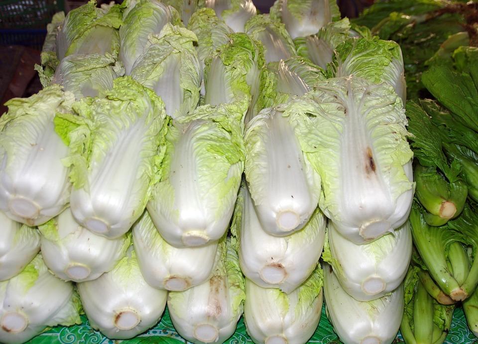 白菜の値段が高い理由は?2018年の価格高騰はいつまで続く?