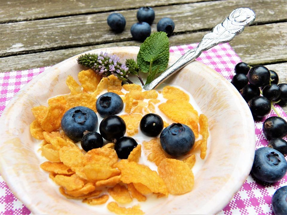 シリアルは太る?太らない?カロリー・栄養素・糖質から真実を調査