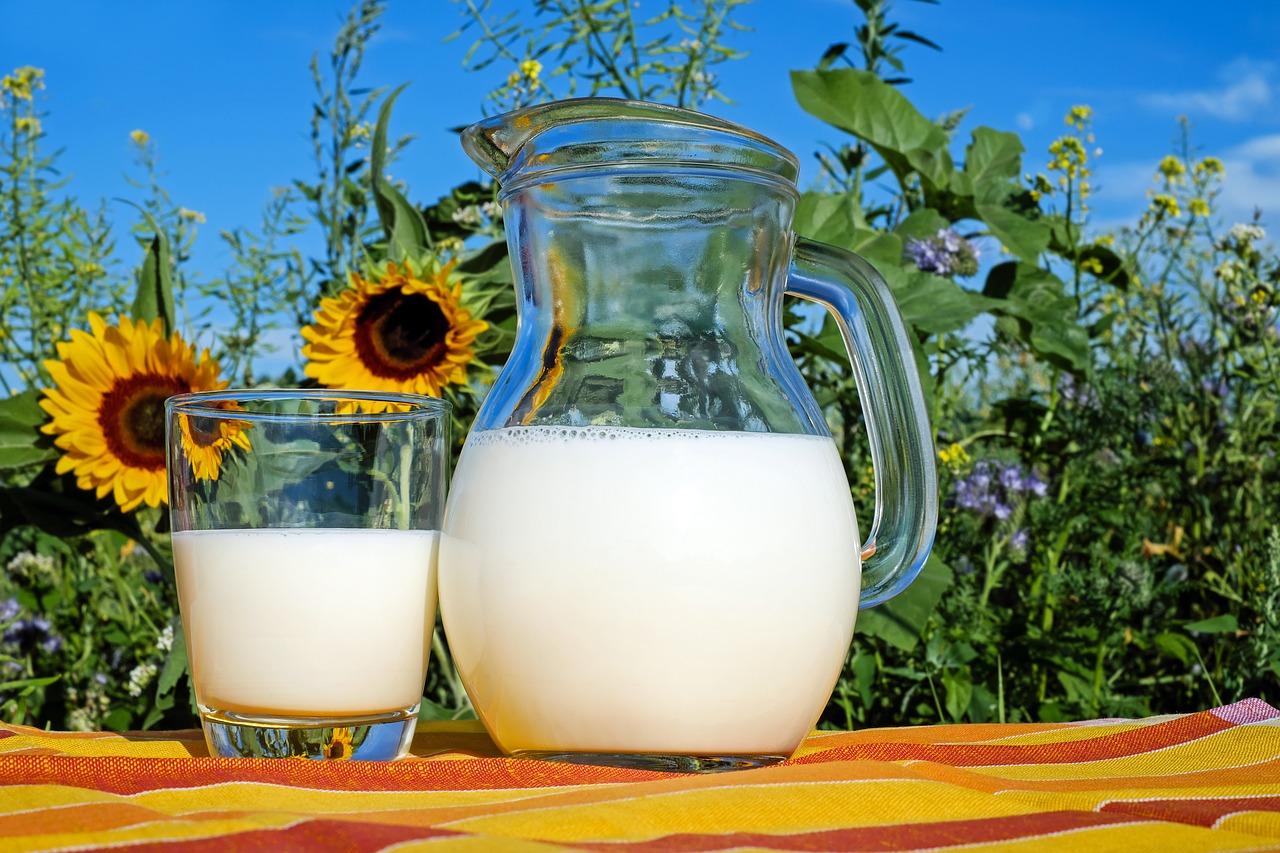 牛乳が危険なのは嘘?本当?根拠となるデータは存在するのか?