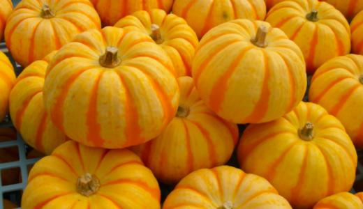 冷凍かぼちゃを解凍したら臭いしまずい…美味しく食べるコツは?
