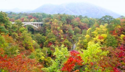 【鳴子峡】紅葉 見頃時期はいつ?おすすめの散策コースと渋滞回避のコツ!
