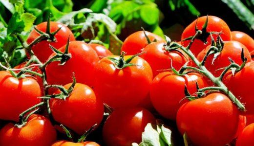トマト嫌いを克服する3つの方法!苦手な人でも食べやすいレシピも紹介