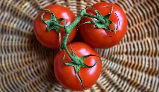 妊娠中のトマトの食べ過ぎは大丈夫?メリット・デメリットを知っておこう!