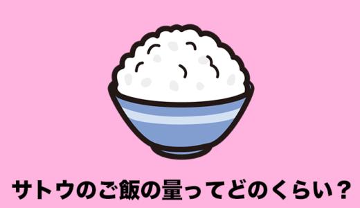 サトウのご飯の量は何合で何グラム?普通のお米とコスパを比較!